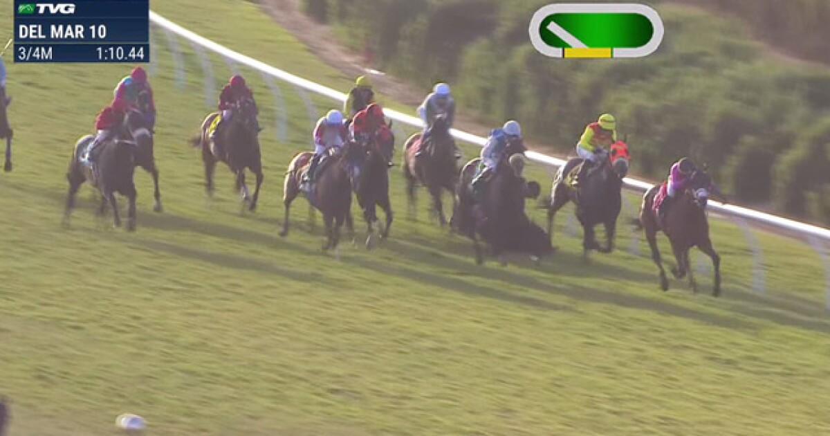 Horse dies after Del Mar racing accident, jockeys in hospital