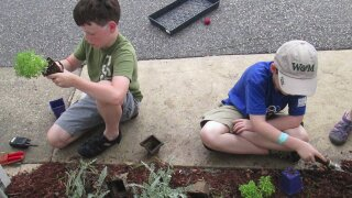 BBM gardening 1.jpeg