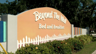 bed and breakfast in dunedin.png