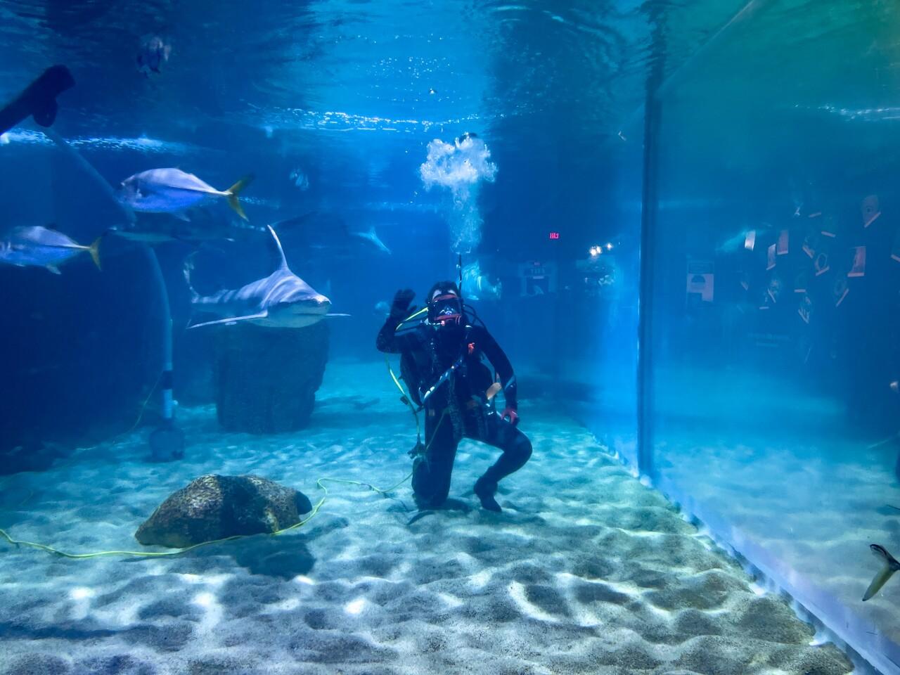Hidden Gems - Cleveland Aquarium.jpg