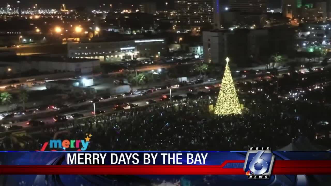 Merry Days by the Bay tree set-up