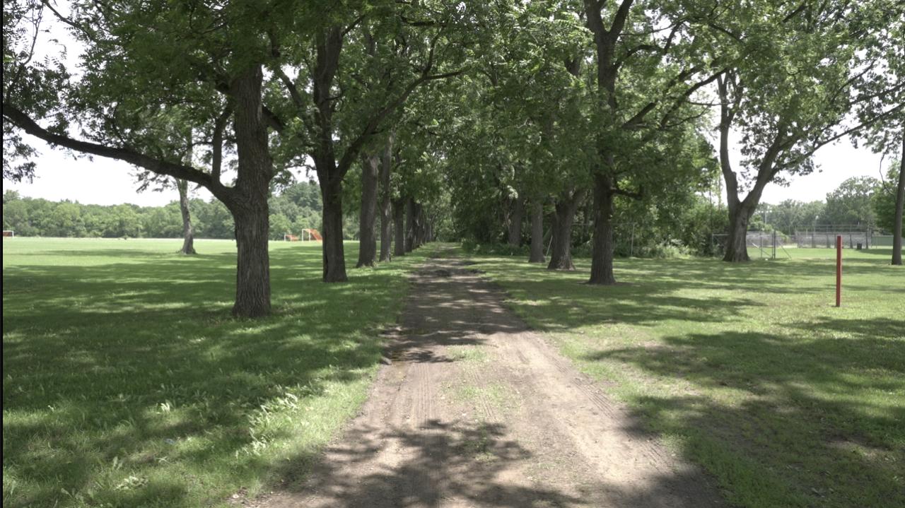 Jackson's ella sharp park