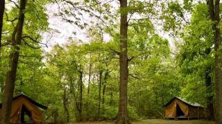 Camp Koch.jpg