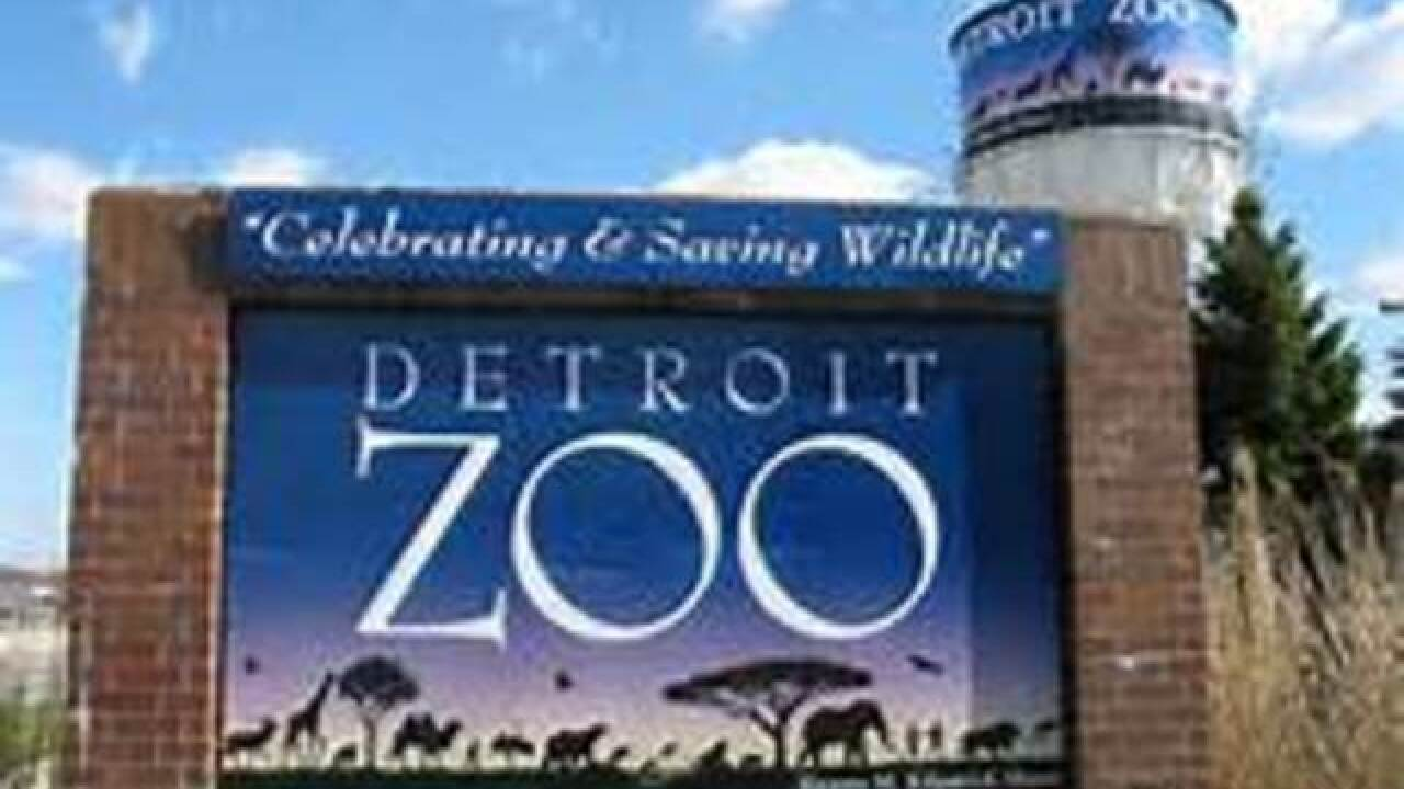 Detroit zoo giving away buckets of poo