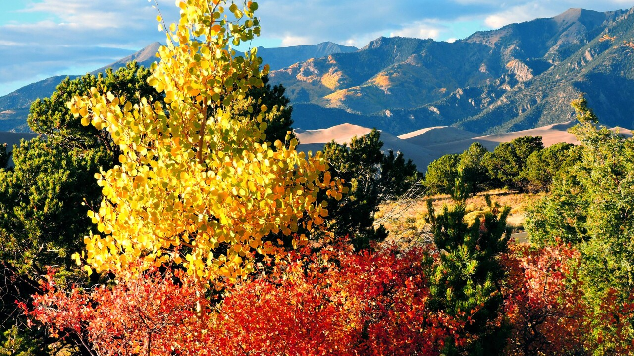 Great Sand Dunes National Park and Preserve in the Fall 7.jpg