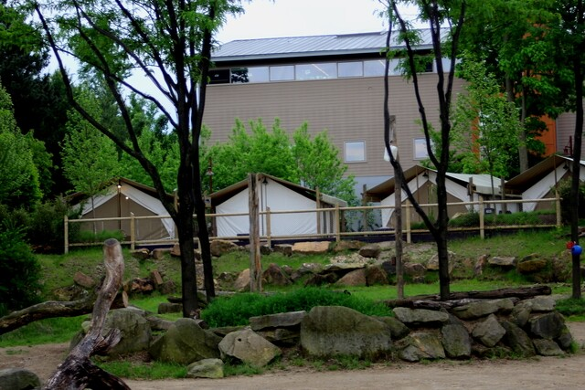 Spend the night at the Cincinnati Zoo -- if you dare!