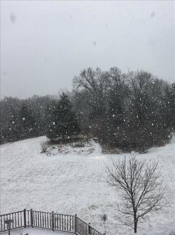 PICTURES: Snow in March!