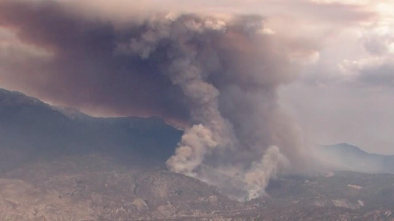 Idyllwild wildfire burns hundreds of acres