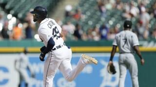 Willi_Castro_Chicago White Sox v Detroit Tigers
