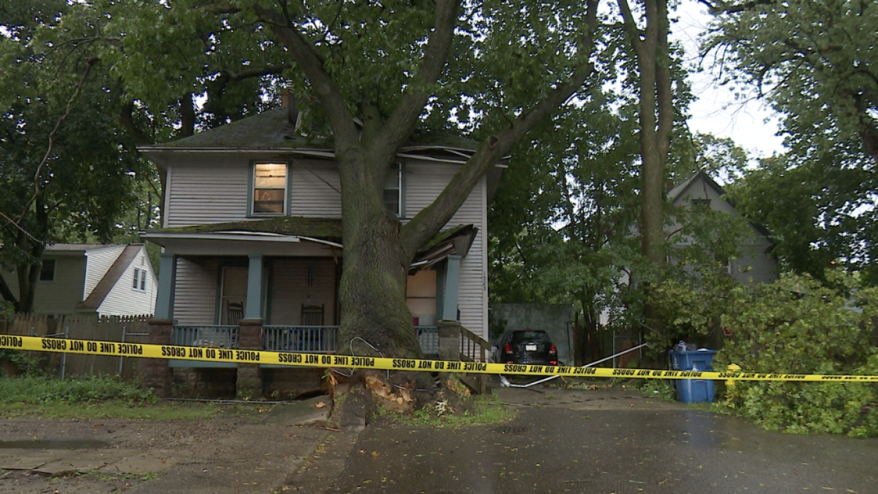 Downed Tree on Home in Kalamazoo
