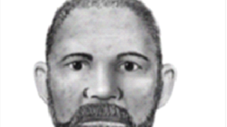 Avondale suspect sketch