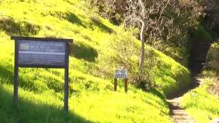 Central Coast Living: Explore SLO's green hills this St. Patrick's Day