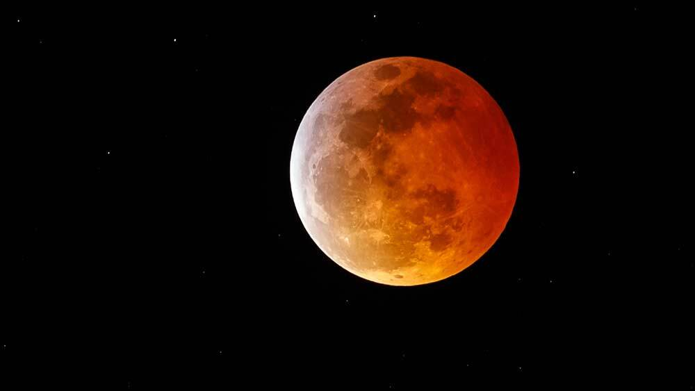 wolf blood moon january 2019 florida - photo #5
