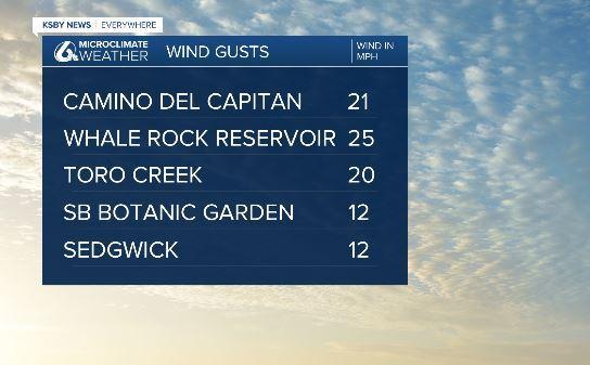 wind day 1121.JPG
