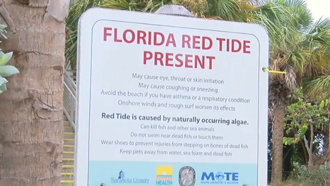 Beachgoers report effects of red tide