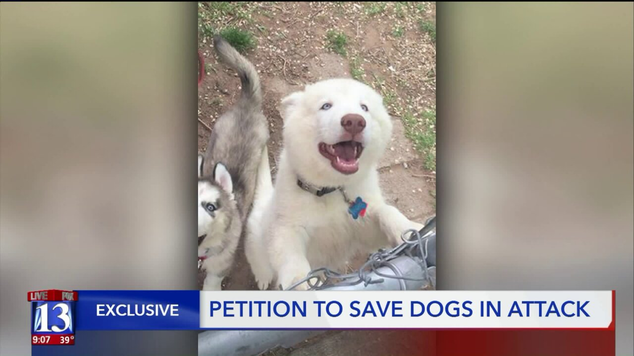 Petition aims to save lives of two dogs after Utah boy loseshand
