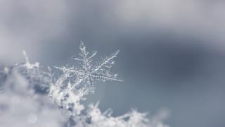 WX Single snowflake.png