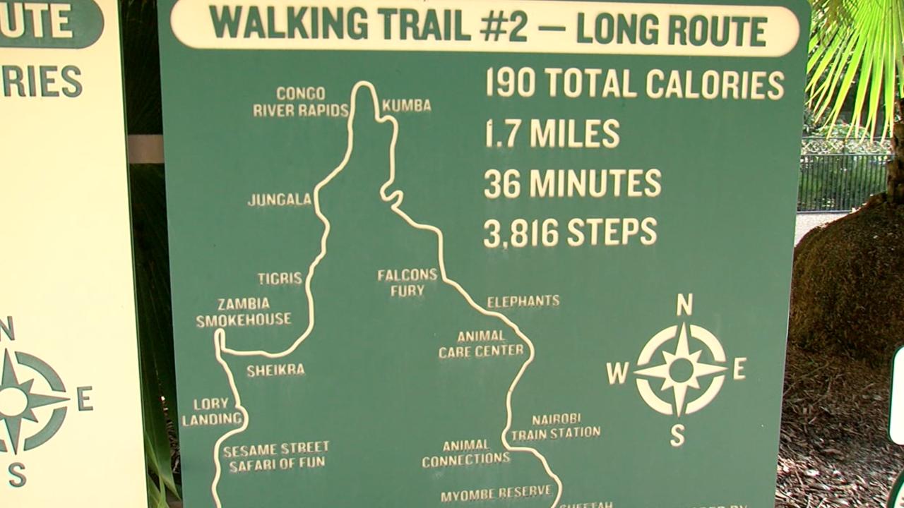 Walking Club: Exploring the walking trails at Busch Gardens