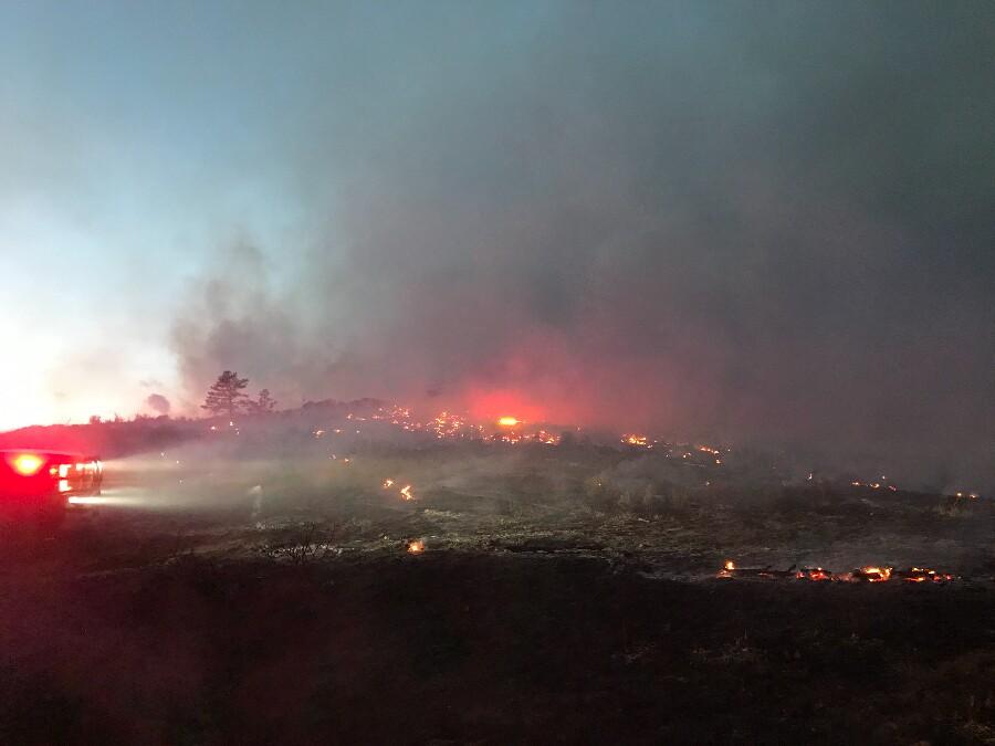 Cameron Peak Fire on Bobcat Ridge