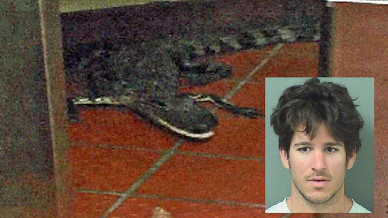 Man allows live gator to chomp his arm