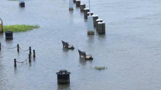 PHOTOS: Barry brings heavy rainfall, floods to Louisiana