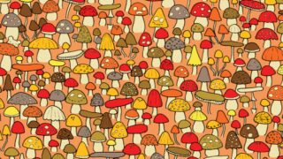 Can You Find The Mouse Among The Mushrooms In This Brain Teaser?