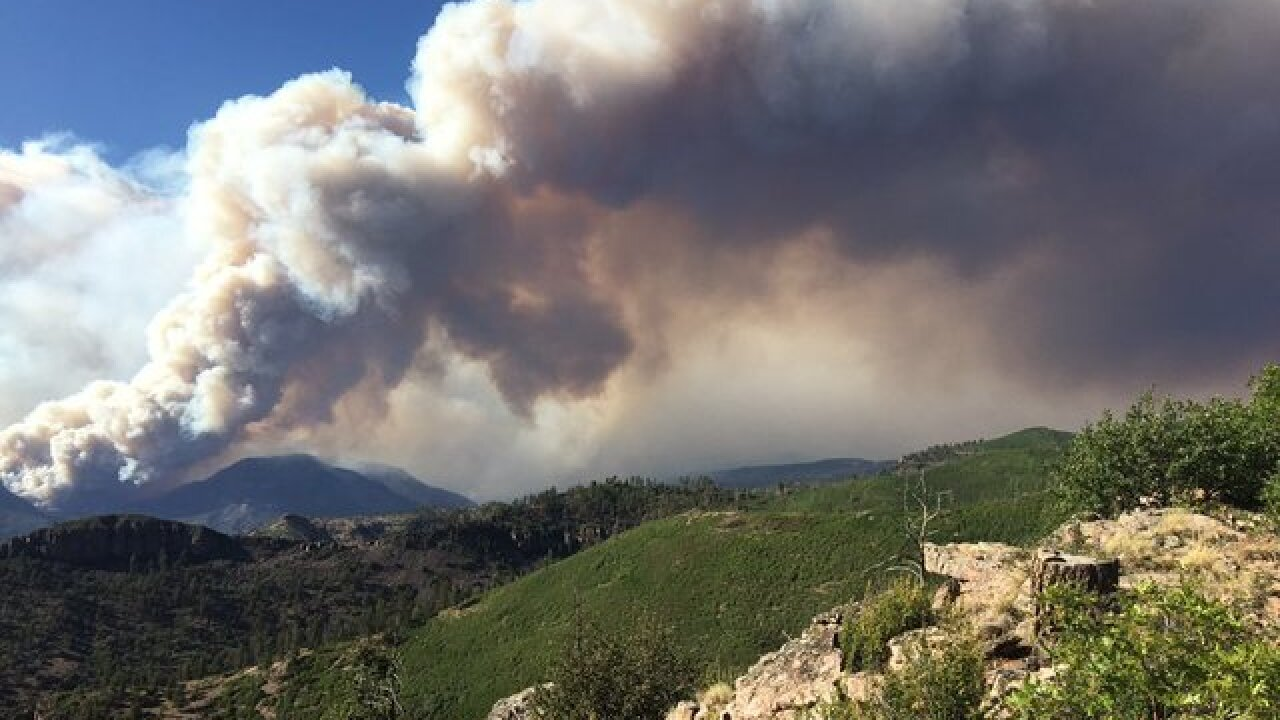 San Juan National Forest to close Tuesday as 416 Fire continues to grow