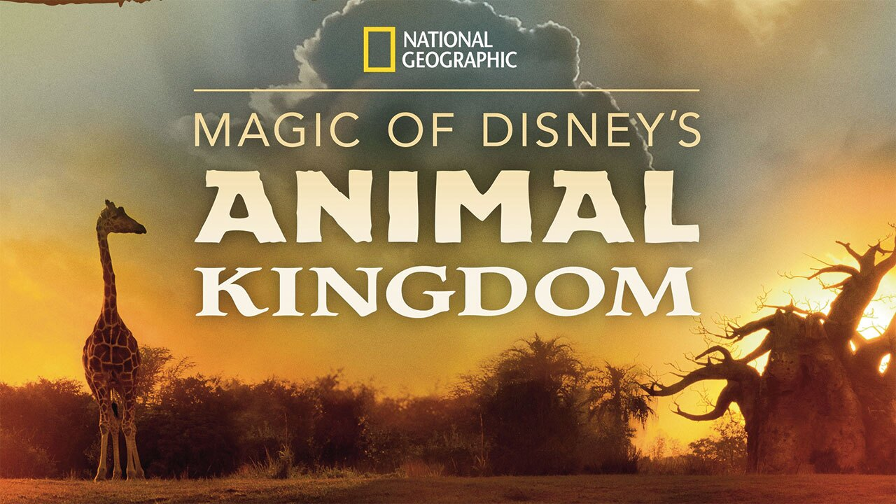 """Magic of Disney's Animal Kingdom"" premiers Sept. 25 on Disney+."