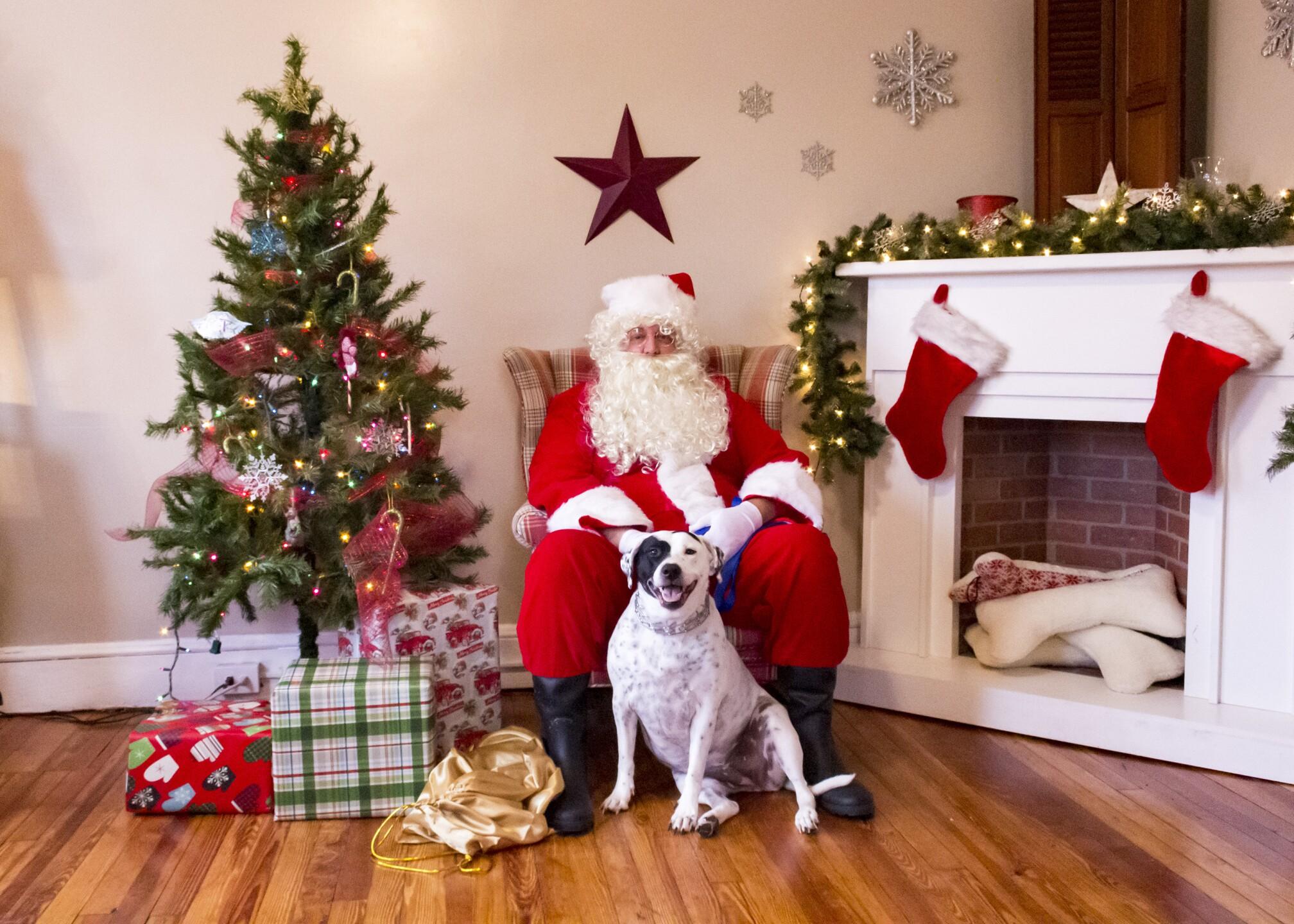 Sparkie and Santa.jpg