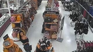 PCSD handbag theft 1.JPG