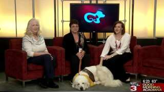 Pet Paws: Animal Aid talks 'I Read to Animals' Program