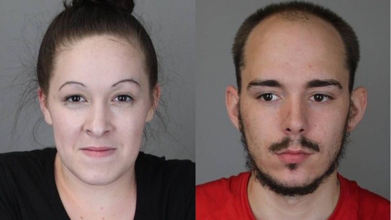 Purse snatching leads to wild foot chase in Tonawanda