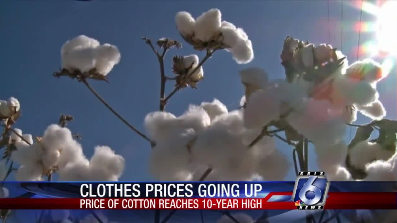 Cotton prices soaring