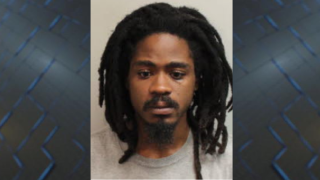Tallahassee man accused of pouring hot water on dog, fracturing ribs