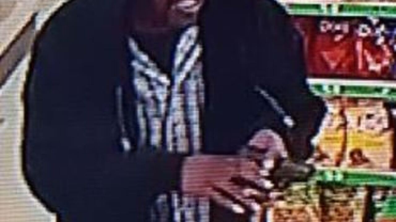Police search for armed convenience store robber