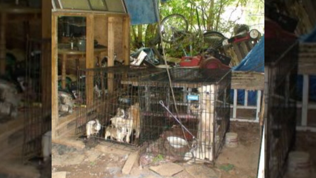 18 Dogs Rescued From Dangerous Conditions