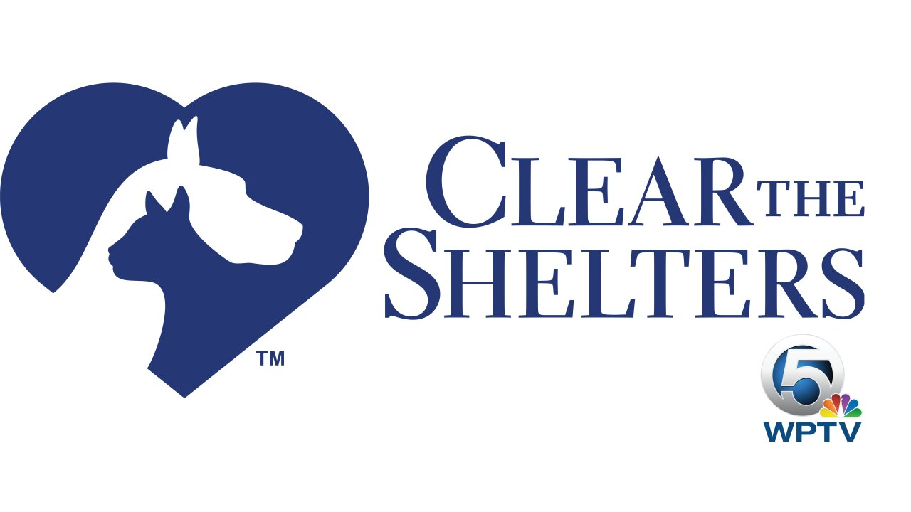 CTS-Affil-Stk-Clear_THE_SHELTERS.jpg