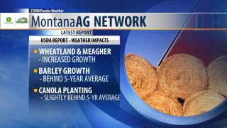 Montana Ag Network Weather: June 4th