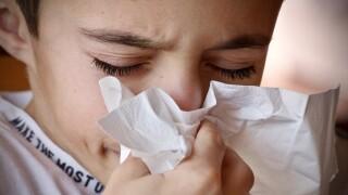 flu cold influenza