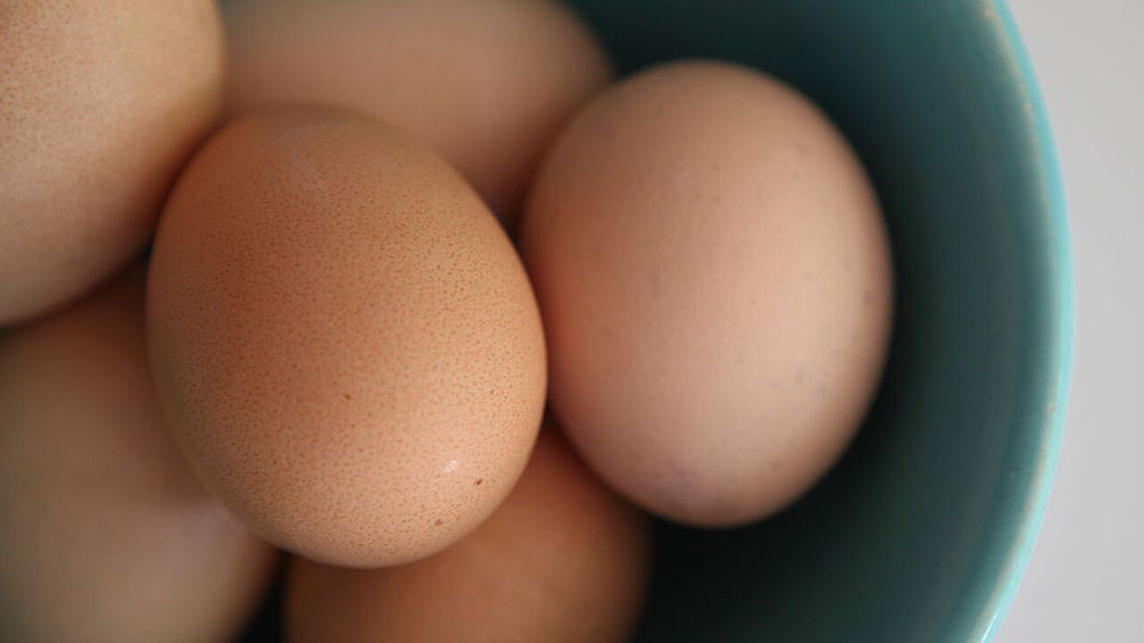 CDC issues warning to food service providers about hard-boiled eggs tainted with listeria