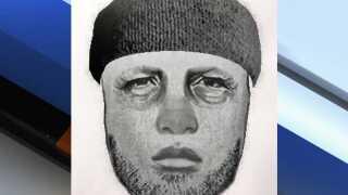 Glendale PD suspect sketch.jpg
