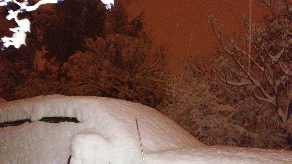 Snow - Nogales - Nelson Rodriguez 1.jpg