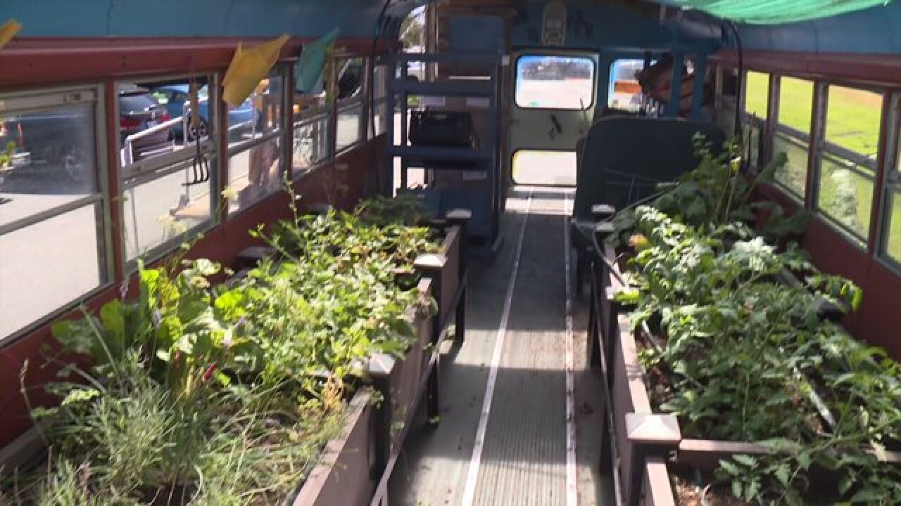 School bus turned green house brings fresh produce and education to local kids