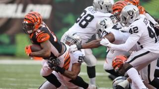 Oakland Raiders v Cincinnati Bengals