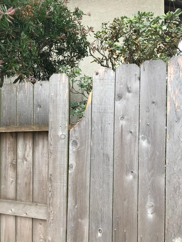 Nunez says the bear broke a piece of the fence while climbing on it. (Courtesy Karina Nunez)