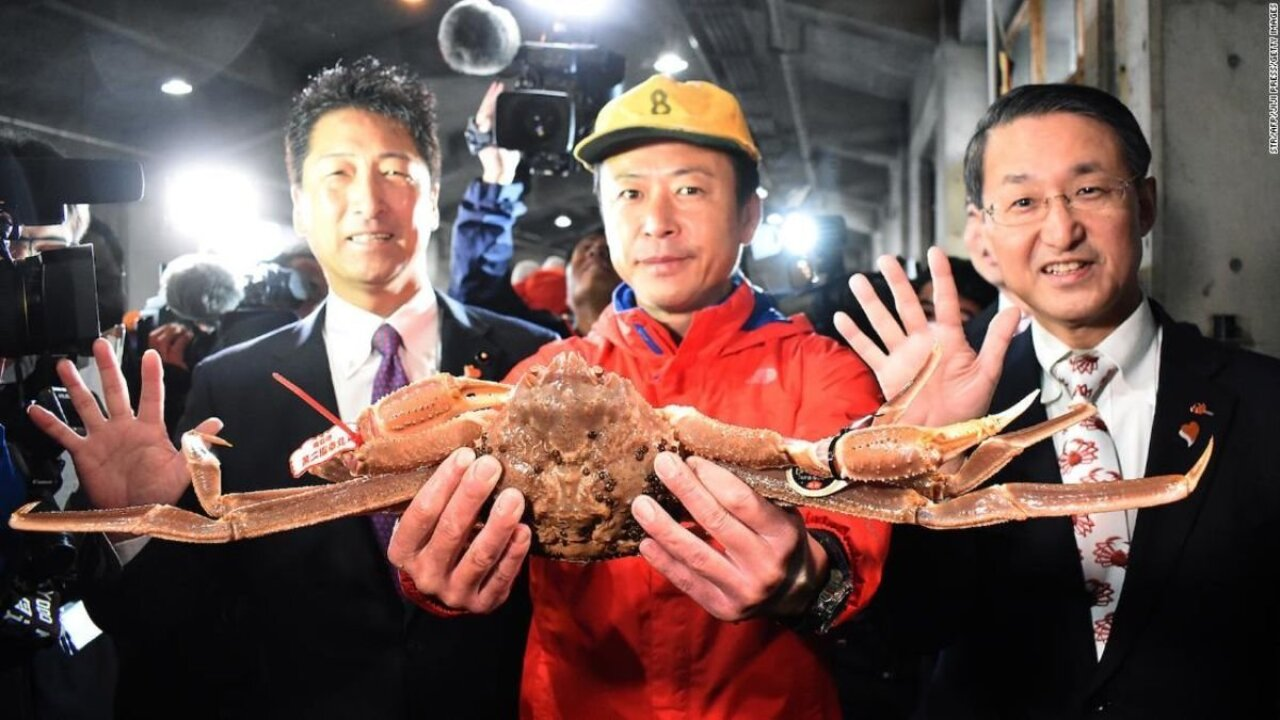 This snow crab sold for a record-breaking $46,000 in Japan