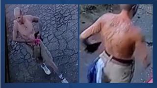 Bakersfield Police seek help identifying auto theft suspect