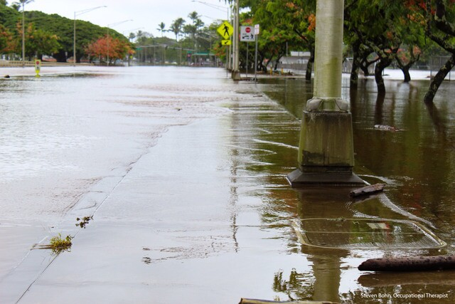 PHOTOS: Hawaii deals with flooding as hurricane approaches