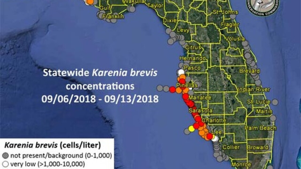 Pinellas County Map Florida.Red Tide Continues In Lee County Up To Pinellas County