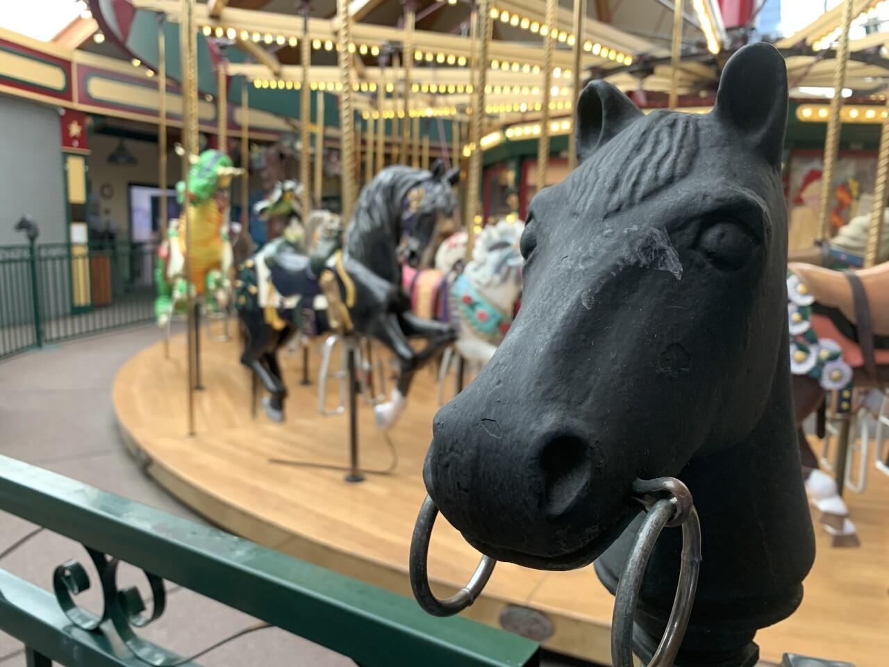 A Carousel in Missoula